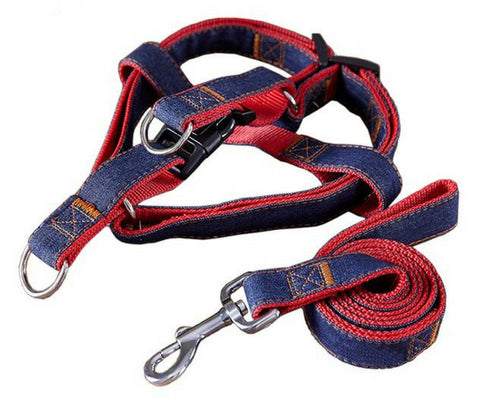 Premium Denim Harness And Leash
