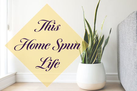 This Home Spun Life