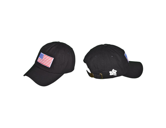 Patriotic Dad Hat - Enlightened Allegiance