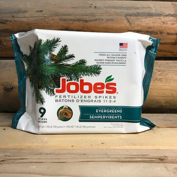 Jobes Evergreen Spikes
