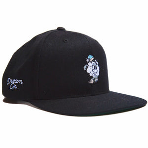 CHASE THE DREAMER SNAP BACK