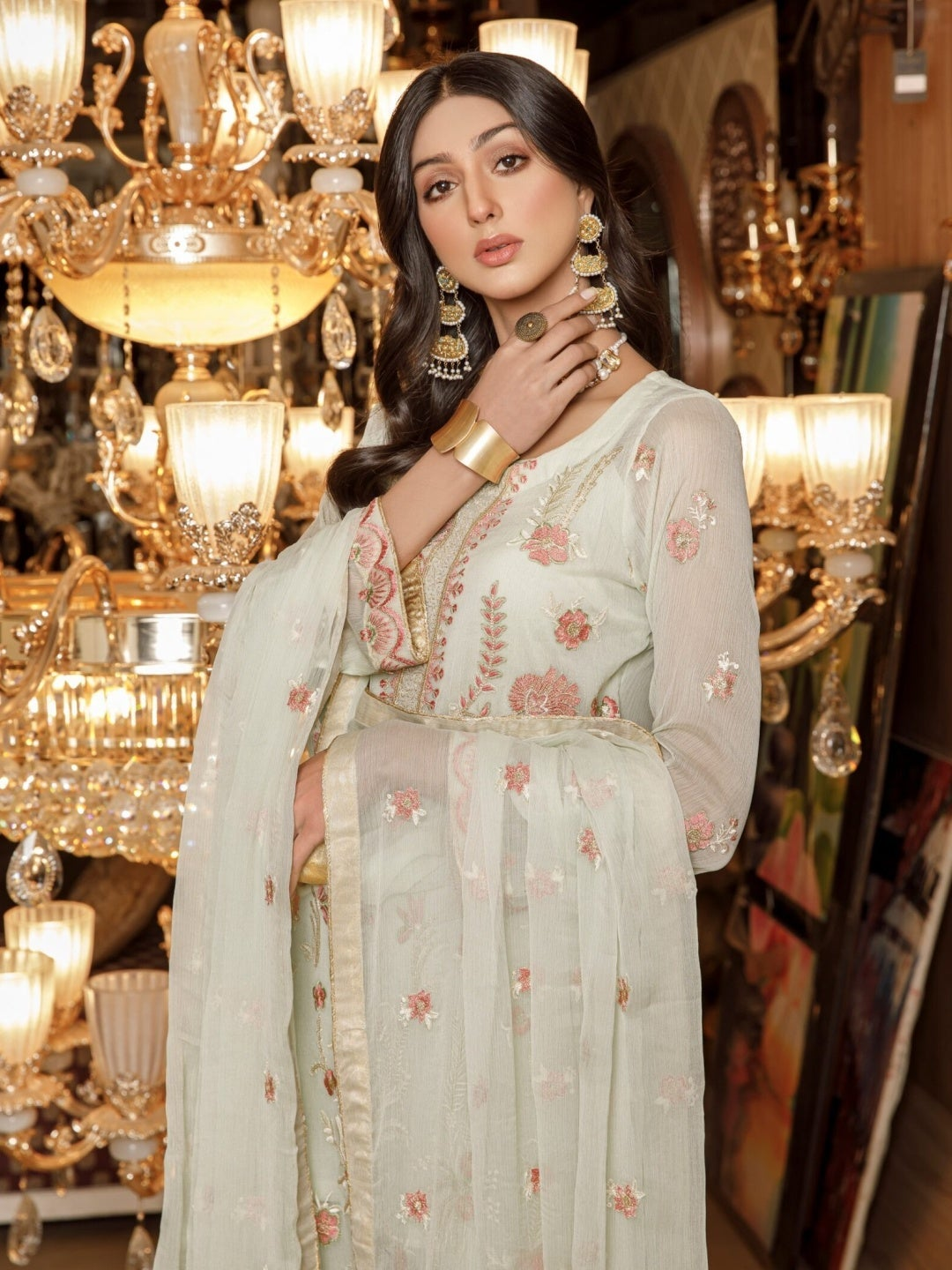 Embroidered Chiffon - Pakistani Dress