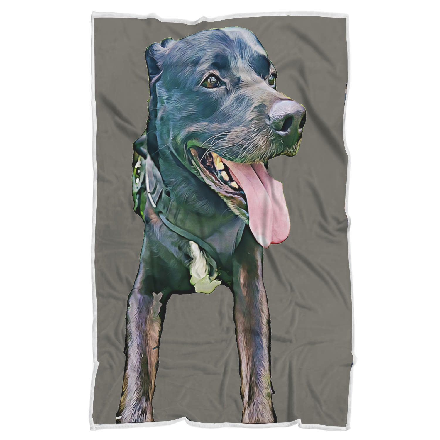 Custom Pet Sherpa Blanket