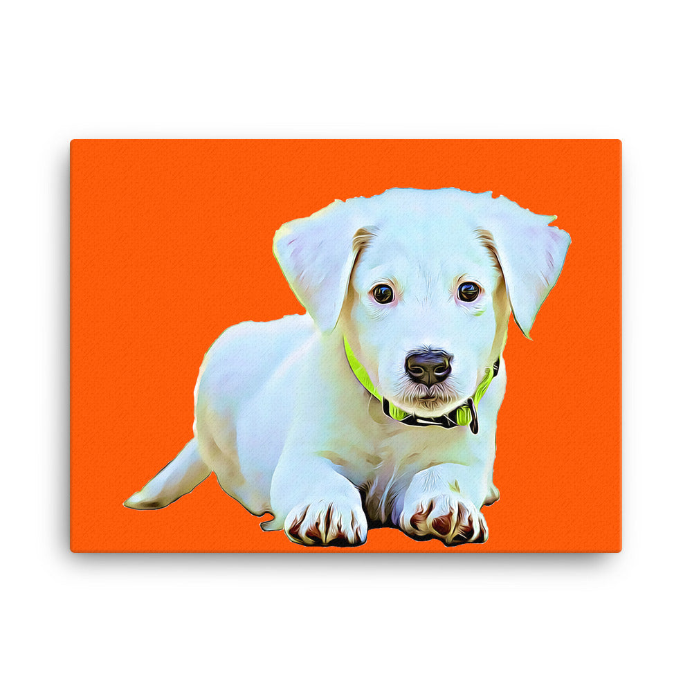 Pet Canvas - U.S. Delivery Only