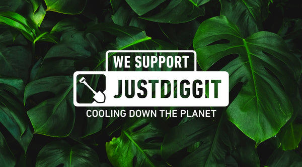 Cortazu x Justdiggit | Regreening Africa, Cooling Down the Planet 🌴