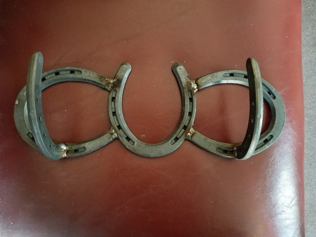 NEW! 2-Hook Bridle Holder
