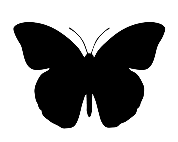BUTTERFLY DECAL VINYL PAINTING STENCIL PACK *HIGH QUALITY*
