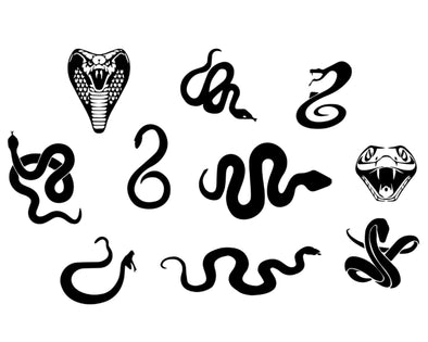 GUCCI INSPIRED SNAKE / COBRA OUTLINE PAINTING STENCIL SIZE PACK *HIGH QUALITY*