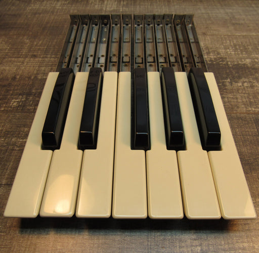 Hammond Organ Replacement Keys, Set of 12 (Diving Board)