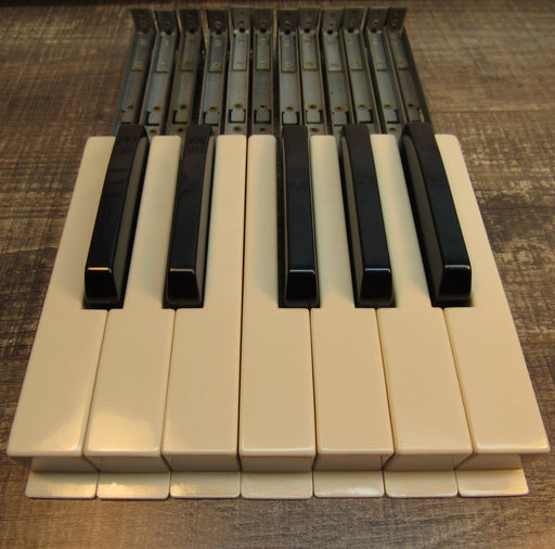 Hammond Organ Replacement Keys, Set of 12 (Waterfall)