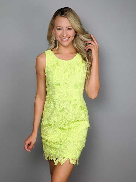 Limelight Lace Dress