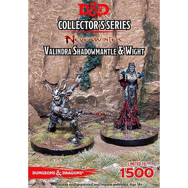 Dungeons & Dragons Neverwinter Valindra Shadowmantle & Wight