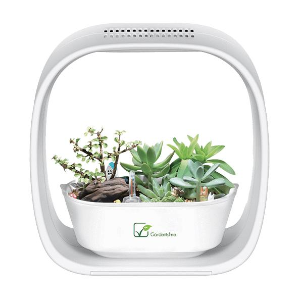 Garden Time Self Automated Grow System