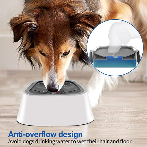 No-Splash Water Bowl