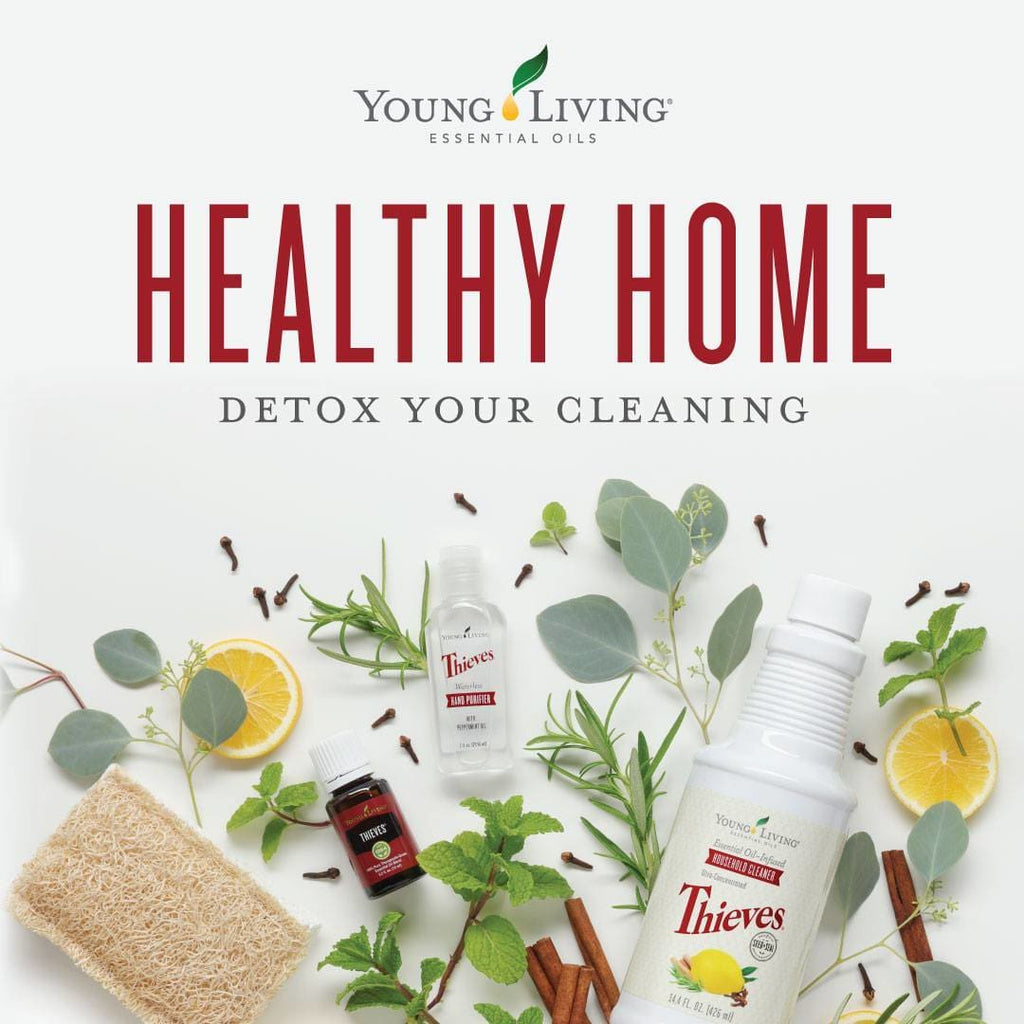 Welcome to the Healthy Home: Total Cleaning Upgrade class!