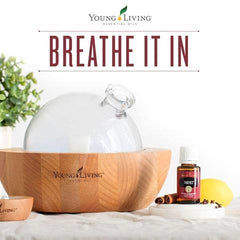 young living thieves essential oil | essential oils for cleaning