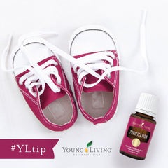 purification essential oil | young living australia | essential oils afterpay