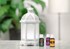 young living lantern diffuser | young living australia | young living diffuser
