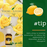 lemon essential oil | essential oils afterpay | young living australia