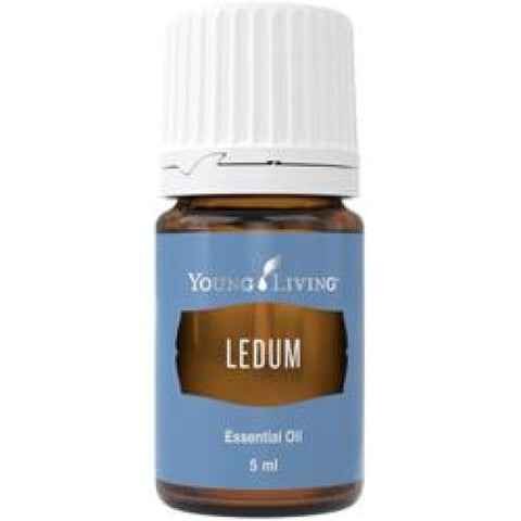 Young Living Essential Oils | Ledum 5Ml Young Living Oils - Singles