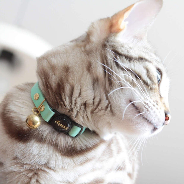 'Mint' Green Leather Cat Collar