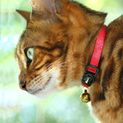 Pretty Cat Collars - Supakit®