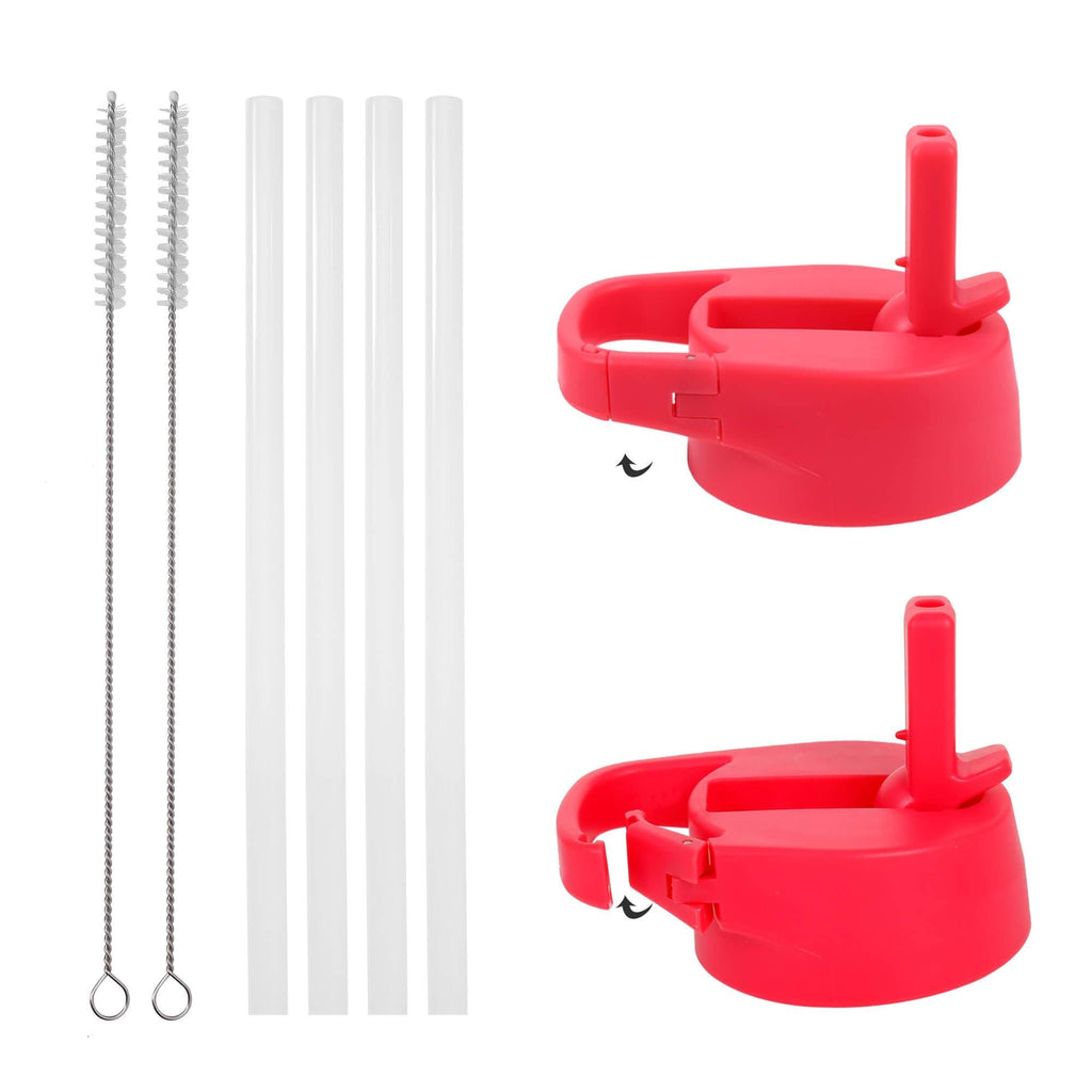 Carabiner Straw Lid Set for Wide Mouth Bottle Accessories Iron Flask Fuchsia