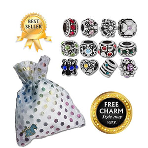 SHIP BY USPS: European Charm Bracelet Charms and Beads For Women and Girls Jewelry, Birthstone