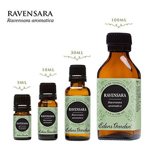 SHIP BY USPS Ravensara 100% Pure Therapeutic Grade Essential Oil by Edens Garden- 5 ml