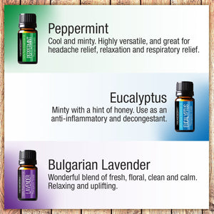 Pure Body Naturals Pure Therapeutic Grade Top 6 Essential Oil Basic Sampler Kit - 6/10 Ml (Lavender, Tea Tree,...