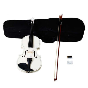 4/4 Full Size Acoustic Violin Set Fiddle with Case Bow Rosin