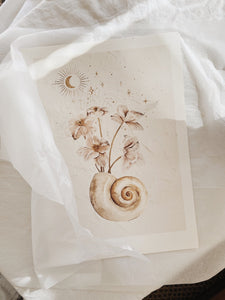 BRIGITTE MAY | SEASHELLS & STARS 02 PRINT