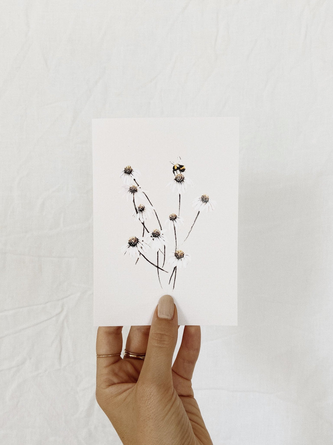 BRIGITTE MAY | DAISIES CARD
