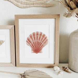 JO COLLIER | PINK SCALLOP
