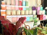 Home Fragrance at Bliss Kingston SE