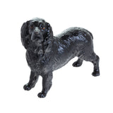 Cocker Spaniel (Black)