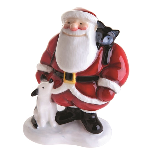 Father Christmas with Dog & Cat