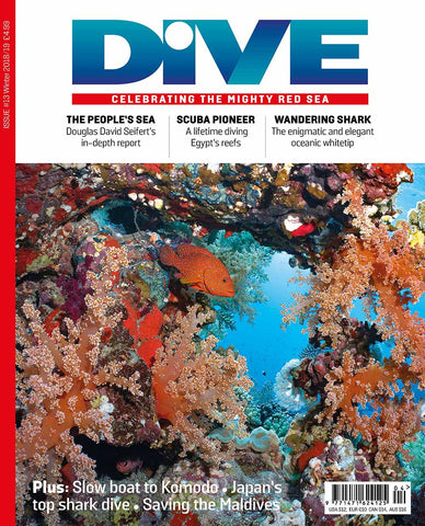 DIVE Winter 2018/19