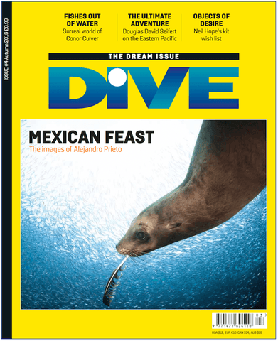 DIVE Autumn 2016