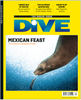 Image of DIVE Autumn 2016