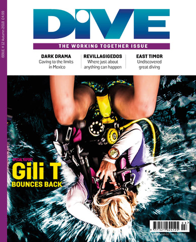 DIVE Autumn 2018