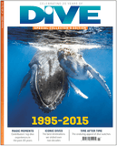 DIVE's 20 YEAR Special Edition