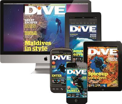 DIVE Digital only Subscription