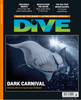Image of DIVE Summer 2016
