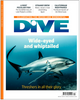 Image of DIVE Winter 2016