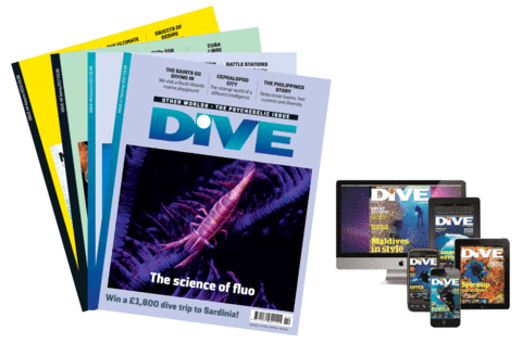 UK Print & Digital Subscription