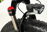 XF 660 -Cyrusher fat bike 1000W