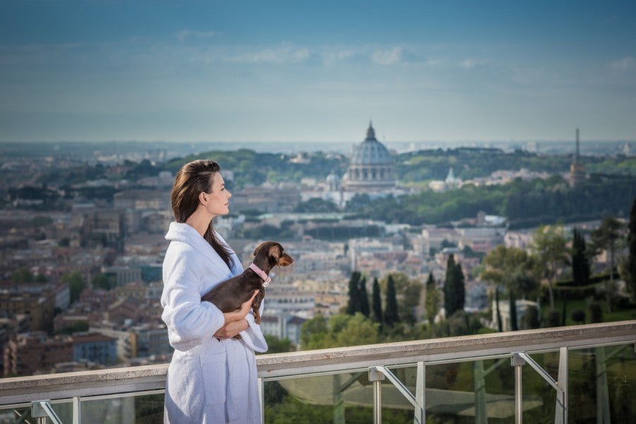 6 OF THE MOST LUXURIOUS DOG FRIENDLY HOTELS IN EUROPE!