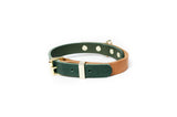 Dog Collar 2 Tone Tan / Green
