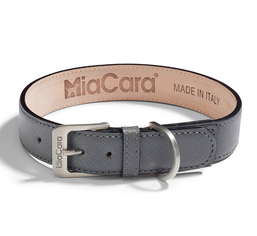 Dog Collar Torino Powder